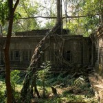 Beng Mealea Courtyard